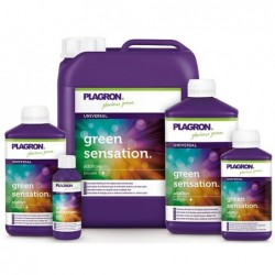 Green Sensation 1 L. Plagron