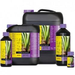 1 Component Soil Nutrition...