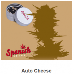 Auto Cheese de Spanish...