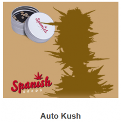 Auto Kush de Spanish Seeds...