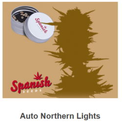 Auto Northern Light de...