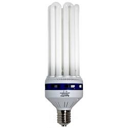 Fluorescente CFL Agrolite...