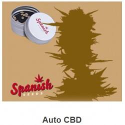 Auto CBD de Spanish Seeds...